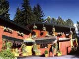 Cedar Springs B & B Lodge