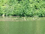 Alpha Lake