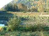 Vedder - Hwy 1 Bridge