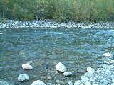 Vedder - Nursery Creek
