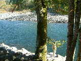 Vedder - Twin Cedars