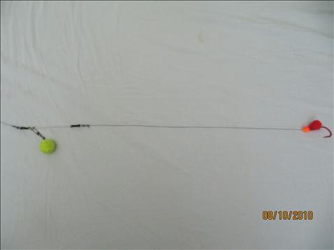 Fishing forum for Salmon fishing setup